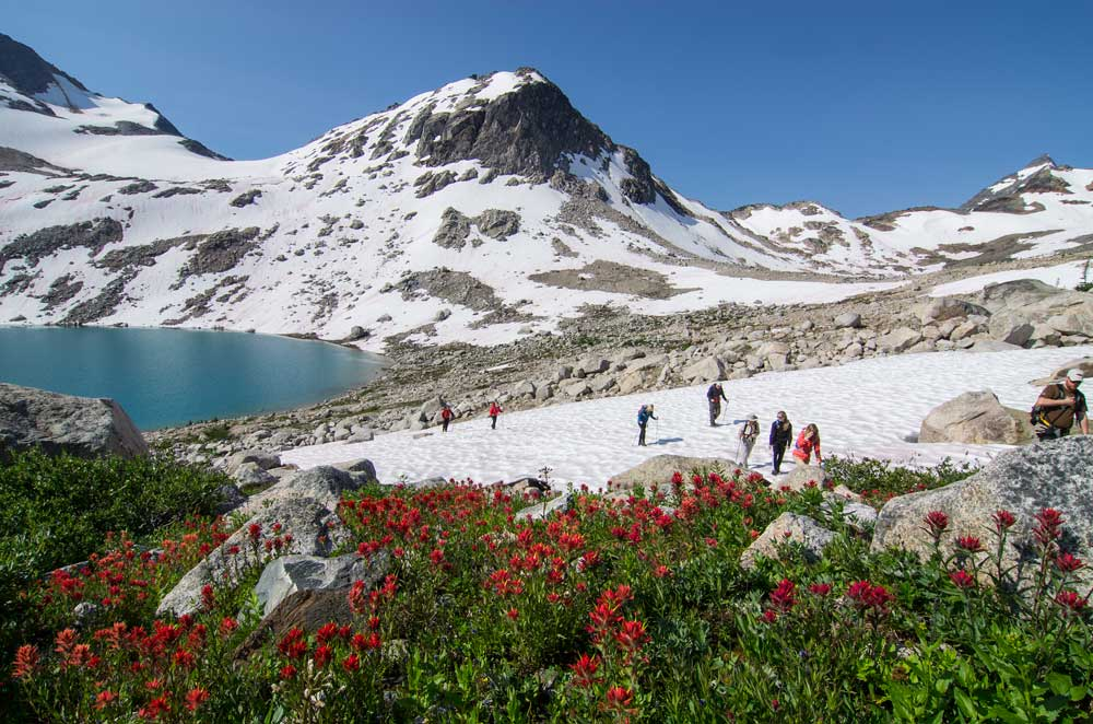 Hikers-Crossing-a-Snowpatch-Bugaboos-Lyle-Grisedale