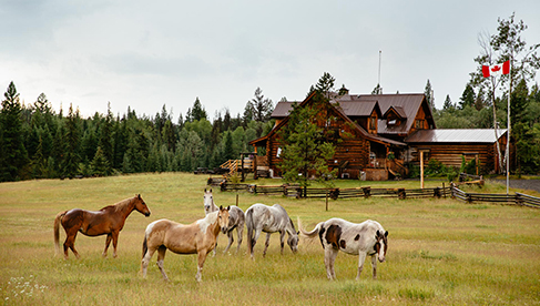 siwash-resort-british-columbia-horseback-riding